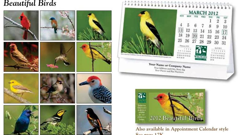 personalized birds tent desk calendar, custom printed in bulk