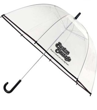 Personalized Clear Umbrella, Custom Printed in Bulk