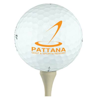 Custom Top Flight Golf Balls Personalized in Bulk